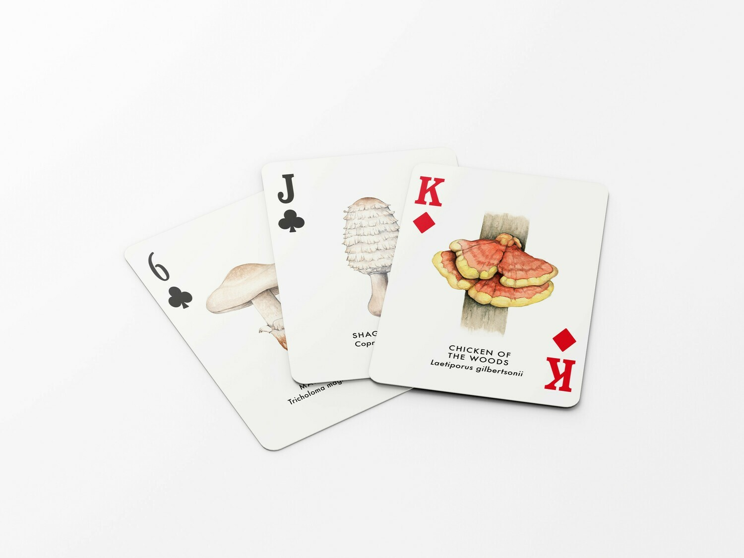 The North American mushrooms playing cards deck