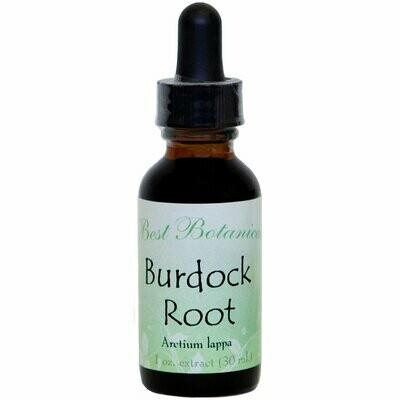 Burdock Root Extract - 1 oz