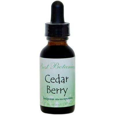 Cedar Berry Extract - 1 oz