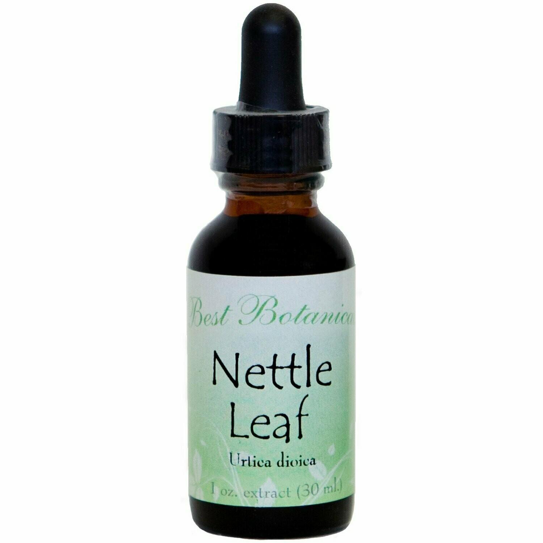 Nettle Leaf Extract - 1 oz