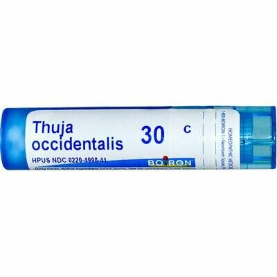 Thuja occidentalis 30c