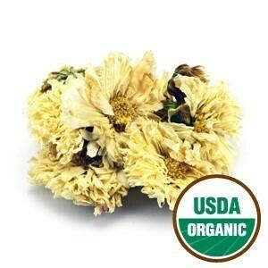 Chrysanthemum Flowers White Org SKU 209210-04