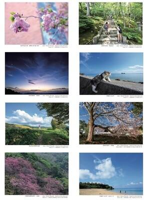 春夏風景ポストカード(桜・新緑・海)