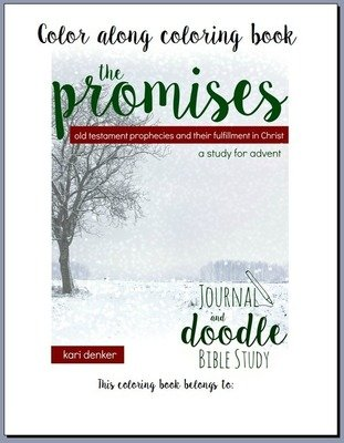 The Promises Color Along Coloring Book