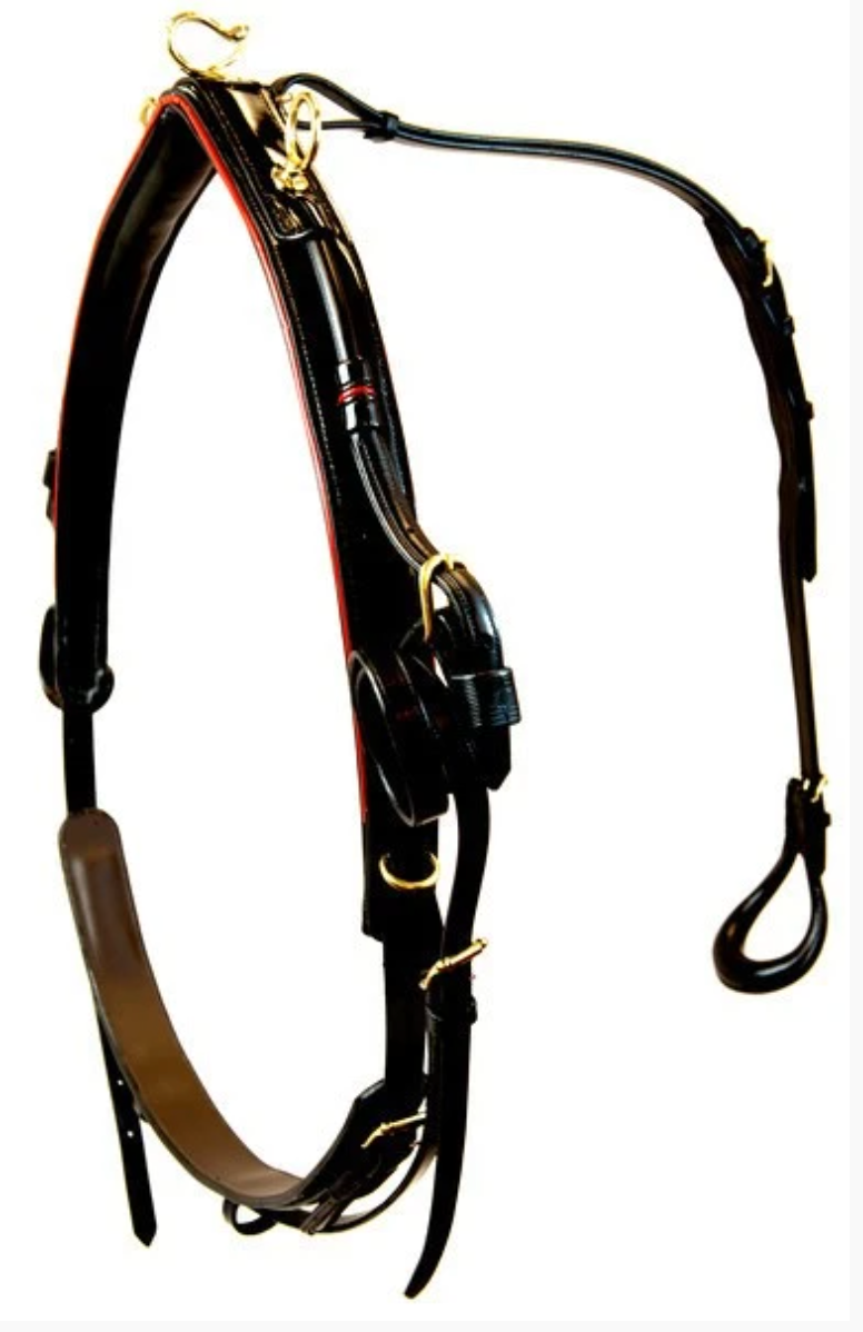 Walsh Platinum Edition Show Harness