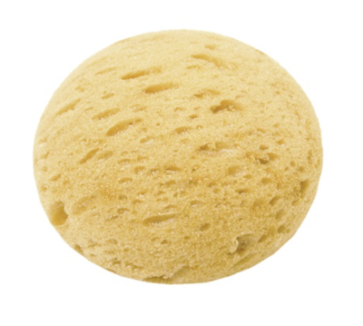 Large Tack Sponge