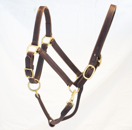Blue Ribbon Deluxe Halter - Double Buckle
