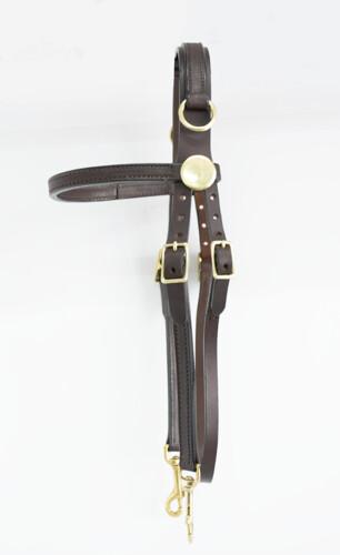 Blue Ribbon Side Check Training Bridle (Horse)