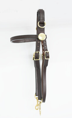 Blue Ribbon Side Check Training Bridle (Horse)