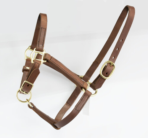 Blue Ribbon Turn Out Halter