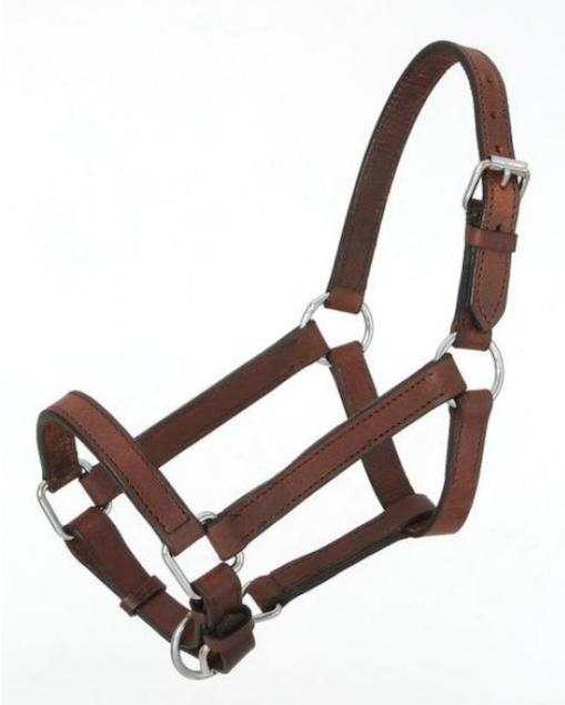 Leather Halter for Mini