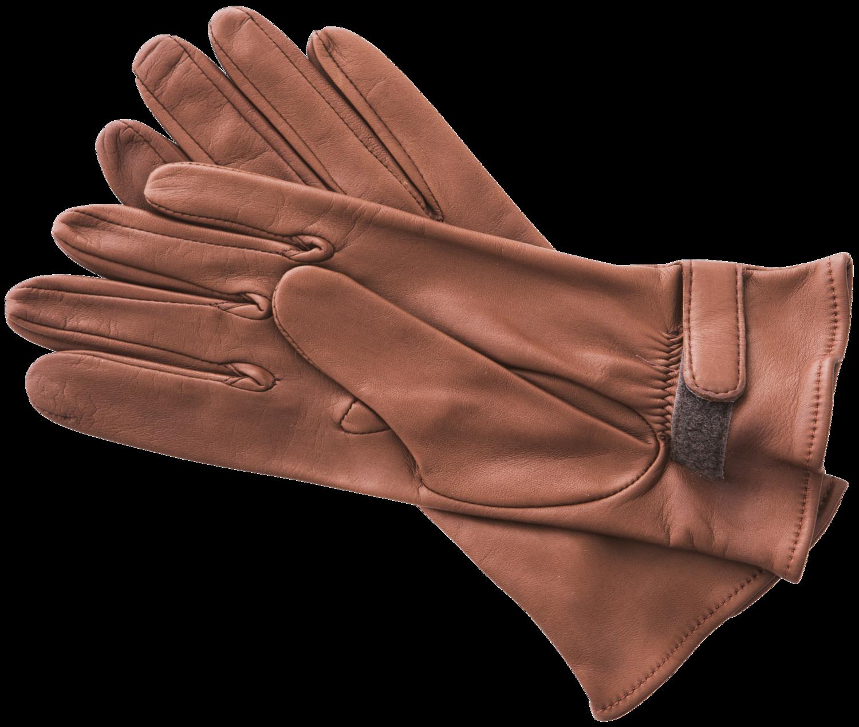 Sensitive Feel Ladies' Long Cuff Show Gloves