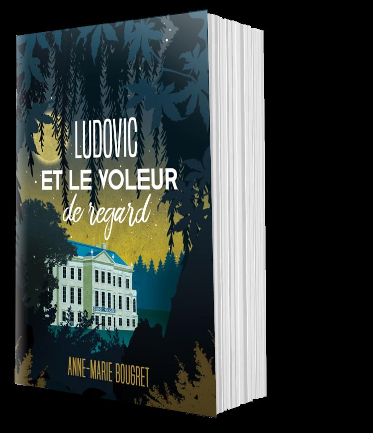 Ludovic et le voleur de regard