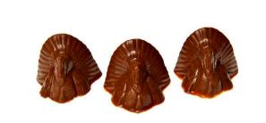 Turkey Sitters