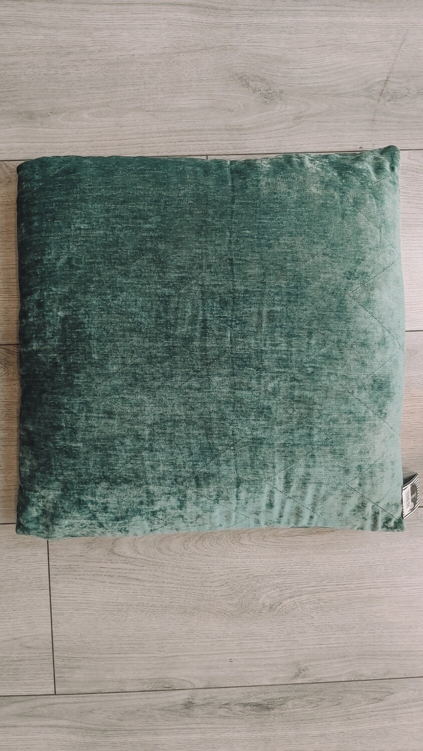 Cushion Ivy 50x50 cm frosted green