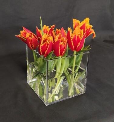 Vaso per fiori o piante in plexiglass trasparente cm. 14x14x14