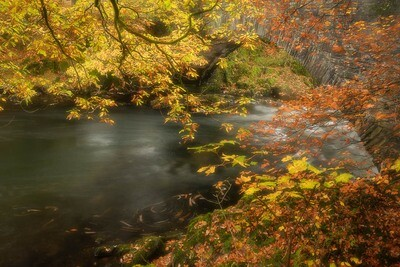 Clappersgate Bridge, autumn leaves