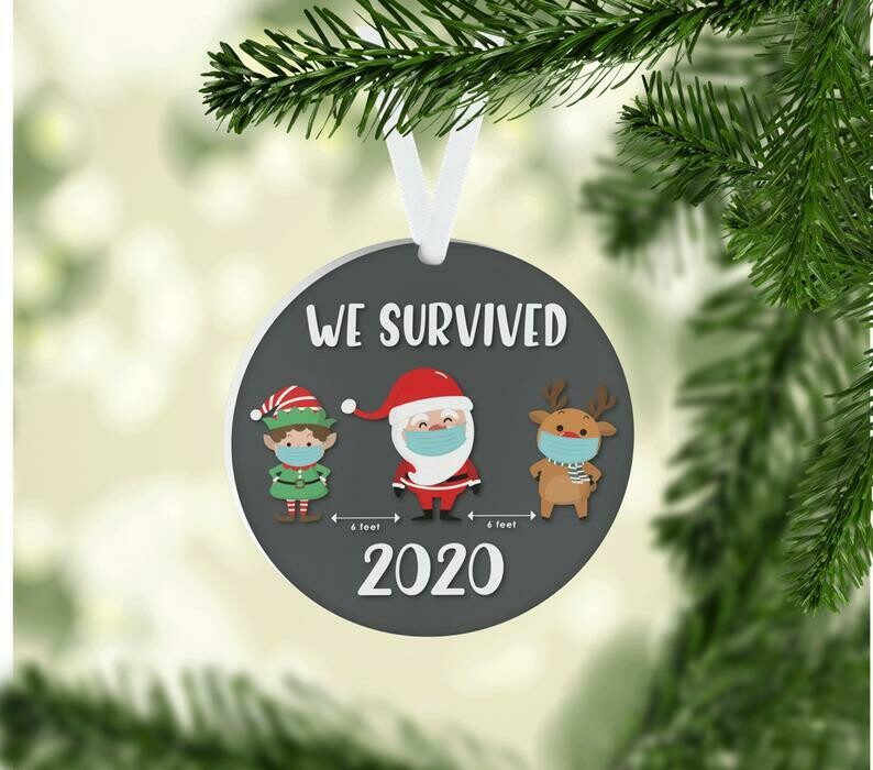 We Survived 2020 Ornament, Merry Christmas Ornament, Quarantined Christmas Ornament, Christmas Decor, Christmas Gifts, Christmas Ornament