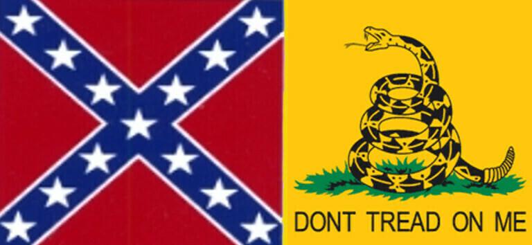 Rebel / Gadsden Flag
