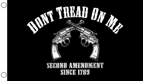 Don't Tread On Me - Black Flag - 2 Guns