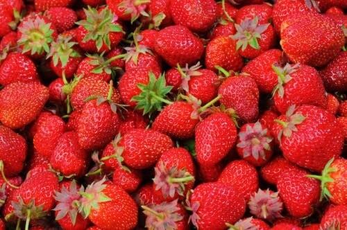 Strawberries 1lb. ORGANIC