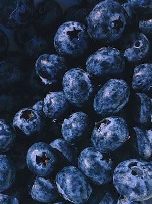 Blueberries Pint USA