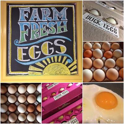 Eggs Duck Fresh Dozen LOCAL