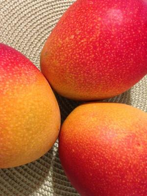 Mango Dried ORGANIC