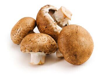 Mushroom Crimini ORGANIC