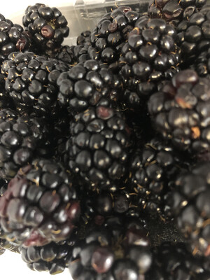 Blackberries ORGANIC