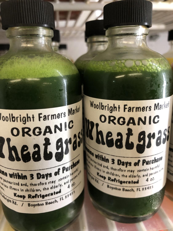Juice Shot Wheatgrass RAW ORGANIC 4oz.