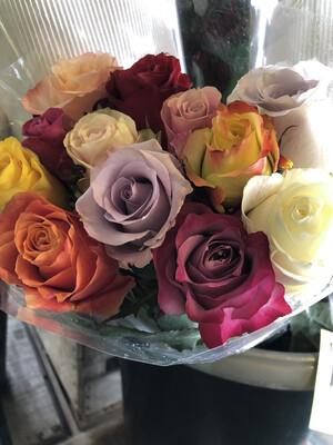 Roses 1 Doz. Rainbow