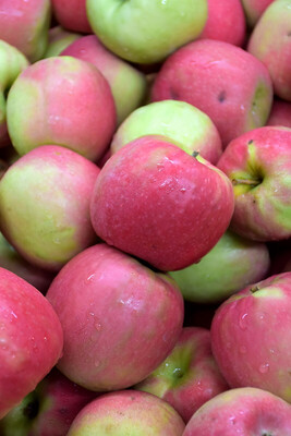Apple Pink Lady /lb. ORGANIC