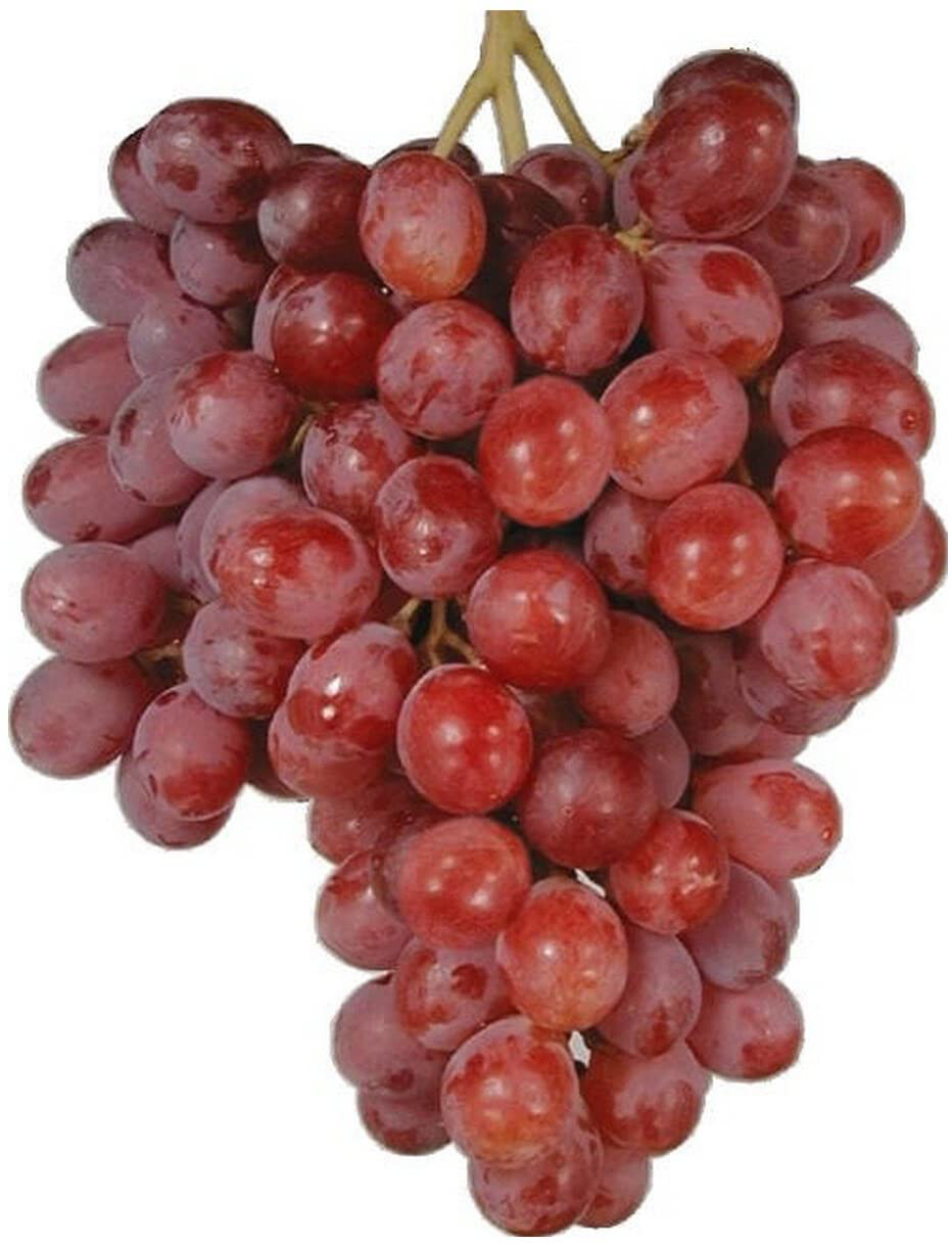 Grapes Red Seedless 1lb. Pack