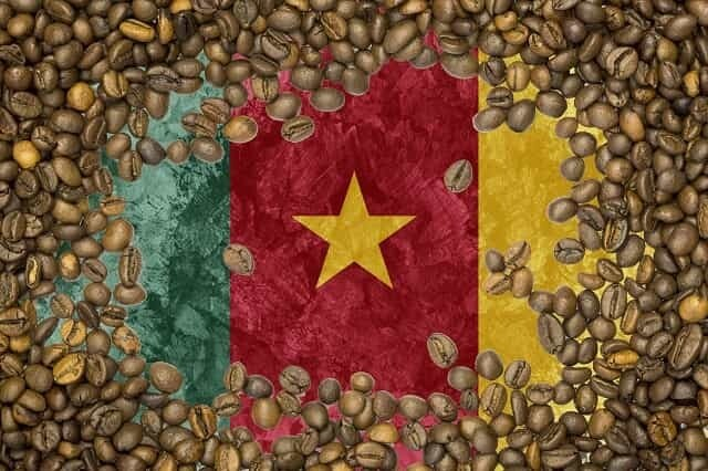 Cameroon Coffee