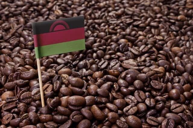 Malawi AA Panwanba Estate