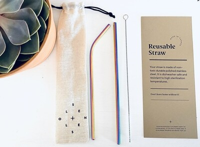 Zero Waste Straw Kit