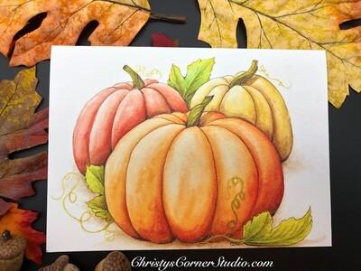 Pumpkins Note Card