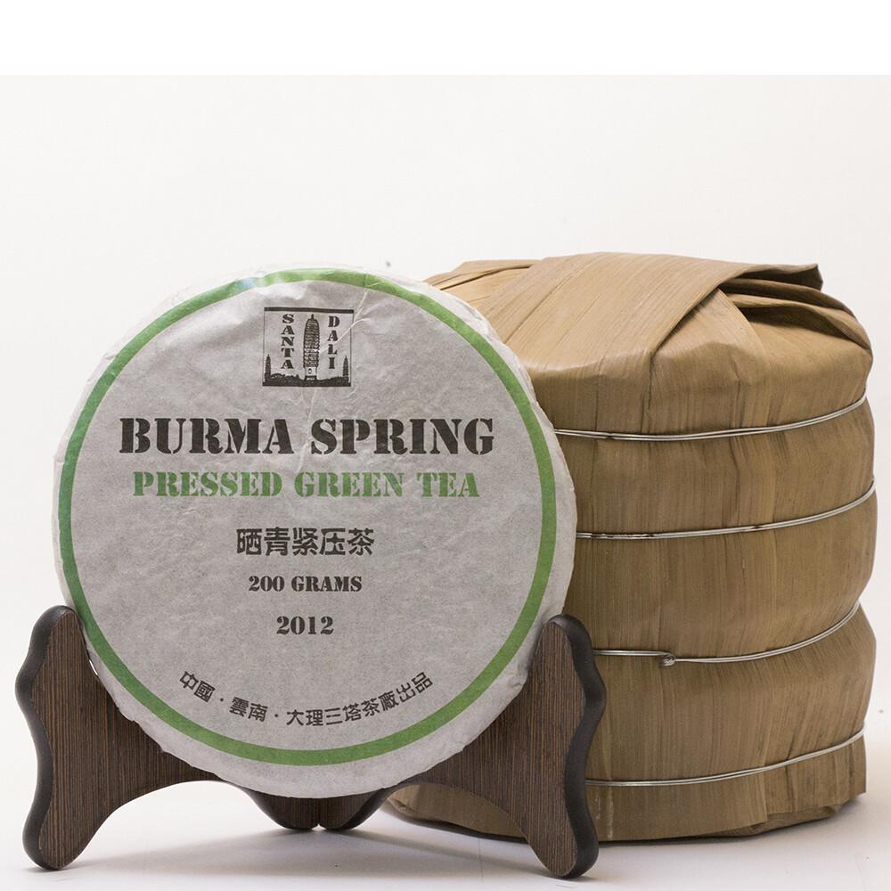 """0606к Чай прессованный зеленый """"Пуэр Шэн """"Burma Spring"""" (мини бин, 200гр)"""