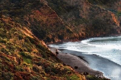 Surf Highway 45 Headland