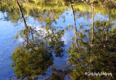Kobble Creek Reflections