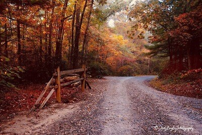 Autumn Country Road 2