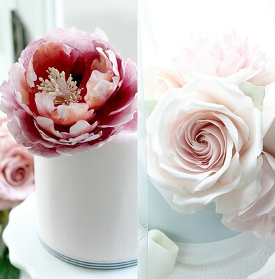 Open Peony and Spiral Rose - Sunday 22nd September 2019 (10-5pm)
