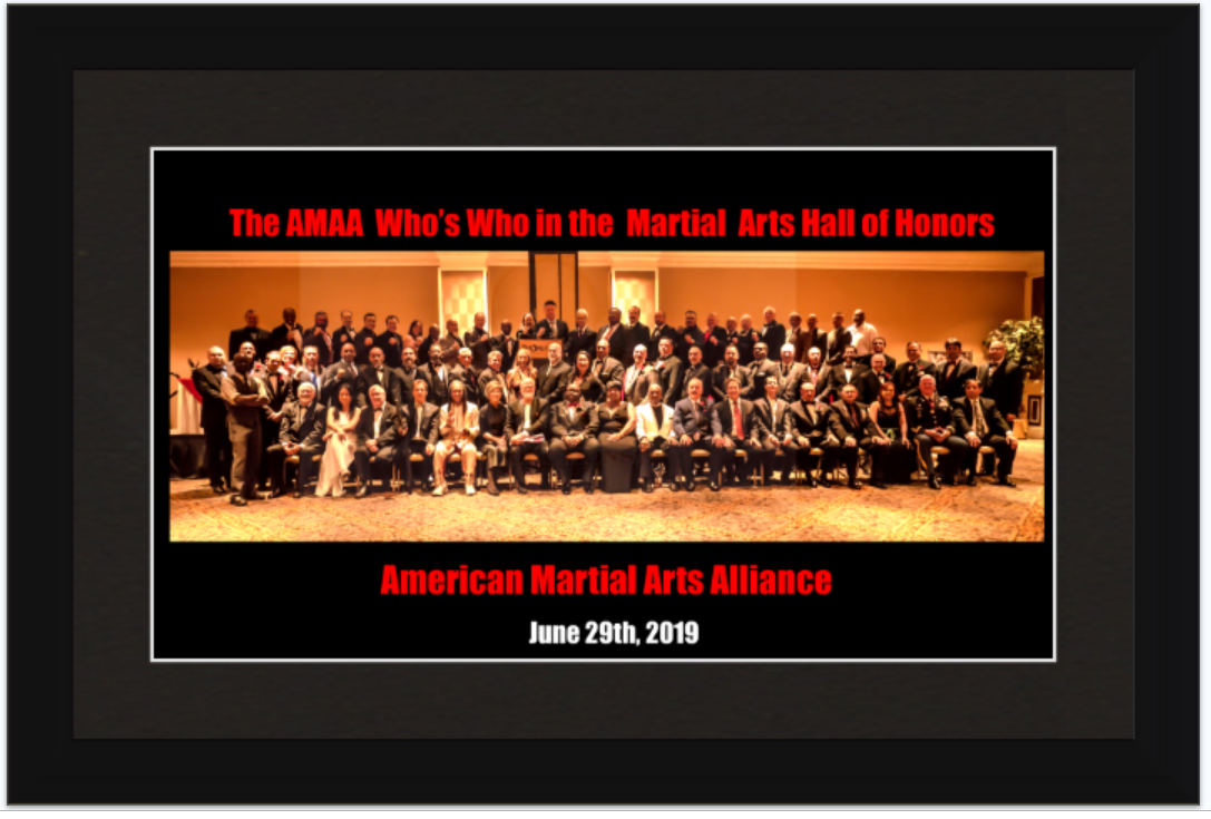 2019 AMAA Who's Who Legends Inductees Group Framed Picture