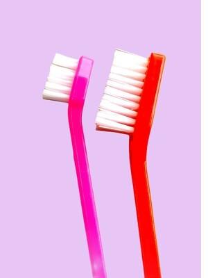 Cepillo dental doble