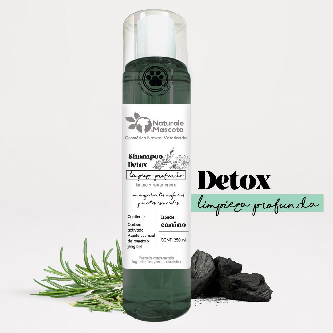 Shampoo detox (jengibre, romero, carbón activado)