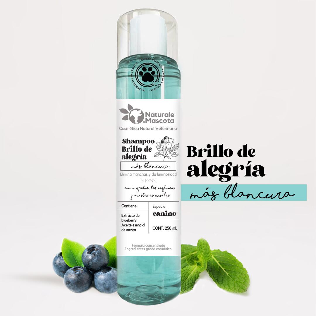 Shampoo para desmanchar/Pelo blanco/ 240 ml.