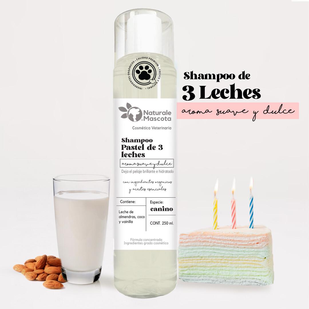 Shampoo Pastel de 3 leches (leche de coco, almendra, vainilla)