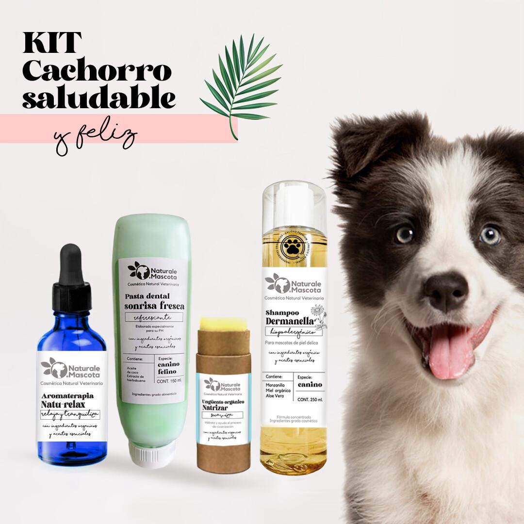 Kit cachorro saludable y feliz/ ENVÍO GRATIS