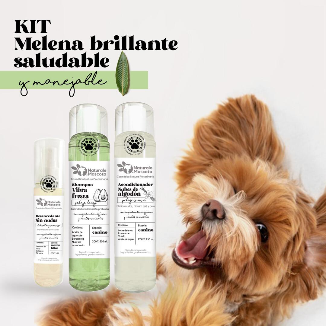 Kit Melena brillante y saludable/ ENVÍO GRATIS